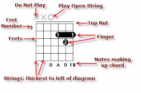 Chord Diagram How To Read Chord Diagrams