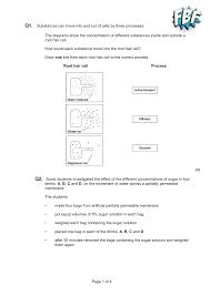 Venn Diagram Of Diffusion Osmosis And Active Transport Root Hair Cell Osmosis And Active Transport Lajoshrich Com