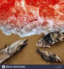 Meer als marine Leben Tod Konzept ...