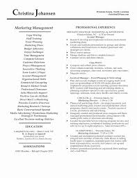 Digital Marketing Resume Sample Unique Marketing Resume Sample â