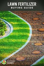 Best Lawn Fertilizer For Grass Buying Guide And Recommendation