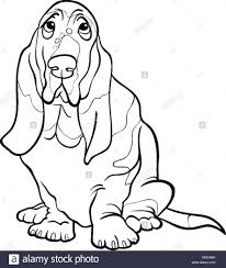 basset hound dog cartoon for coloring ...