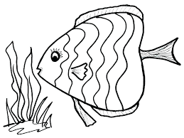fish coloring pages to print fish coloring pages for kids you can print and color fish fish coloring pages to print free rainbow