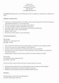 Best Business Resume Template Sample Business Analyst Resume Senior Data Analyst Cv Resume