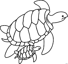 turtle coloring pages new swimming sea turtle coloring page turtles 14f sheets pages free