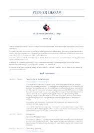 Sample Salesperson Resume Salesperson Resume Samples Templates Visualcv