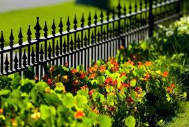 landscaping along a fence ideas a short black wrought iron perimeter fence with low ground cover and red pansies garden fence design plans