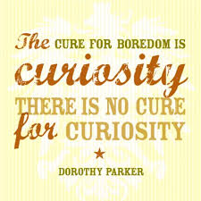 Curiosity Quotes Classy 48 Famous Curiosity Quotes And Sayings