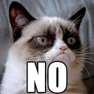 Steam Curator: Grumpy Cat Curation