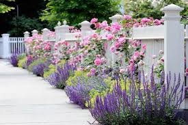 Small Picture 4 Gorgeous Garden Looks for a Narrow Planting Strip