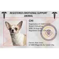 Emotional support animal real Vest Emotional Support Animal Identification Kit Emotional Support Animal Identification Kit Service Dogs Registry Emotional Support