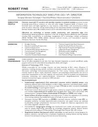 Cover Letter Cio Resume Samples Cio Executive Resume Samples Cio