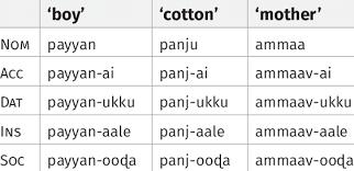 Tamil Regular Noun Declensions Download Table