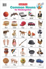 Noun Picture Chart Amazon In Buy Educational Charts Common Nouns Book Online