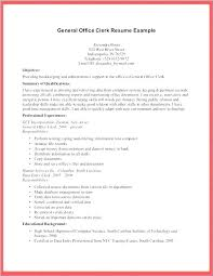 Office Clerk Resume General Resume Sample General Resume Objective ...