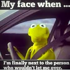 kermit driving face. Fine Driving Kermit The Frog Driving Face  Photo8 Throughout Driving Face D