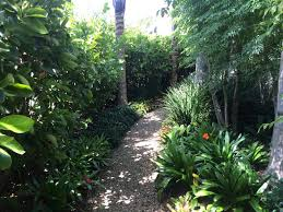 Small Picture nz tropical garden Google Search Garden Pinterest Tropical