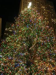 Crafty Steins Christmas Trees Nice Design Ben Stein On Ideas