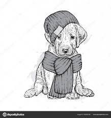 ニットの帽子とマフラーで美しい犬ですかわいい子犬ポストカードや
