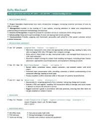 Sample Resumes For It Professionals Career Life Situation Resume