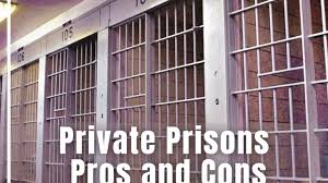 Essay Tips- Private Prisons Pros and Cons