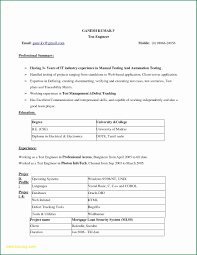 25 Resume Format Word Download Free Sample Resume