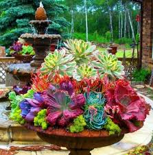 Very large colourful succulent urn