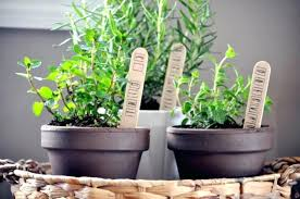 herb wall kitchen beautiful 34 best kitchen wall decor ideas with countertop herb grower