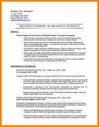 Customer Service On A Resume Summary Examples For Throughout 17