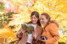 <b>Autumn</b> In Japan 2020 – How To Enjoy The <b>Fall</b> Foliage Season ...