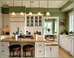kitchen remodel houston texas for home design elegant kitchen cabinet doors vancouver interesting kitchen cabinet doors