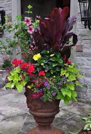 Small Picture 740 best Container Gardening images on Pinterest Gardening