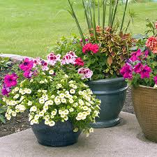 two retail garden center locations serving southern md offering plants and products to get your garden landscape and lawn projects done