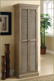 Tall Storage Cabinet With Shutter Doors of Cool Designs Ideas Of