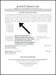 Resume Summary Statement Examples Gorgeous Resume Summary Examples Datainfo