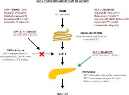 Insulin Pen Comparison Chart Glp 1 Analog Dosing Chart