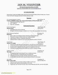 Sample Resume Template Word Inspirationa Free Resume Templates