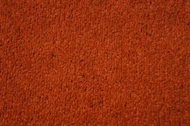 orange carpet texture. vantage-twist-burnt-orange.jpg orange carpet texture