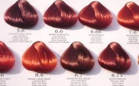 Wella Red Colour Chart Copper Red Red Copper Hair Color Shades Of Red Hair Red