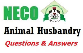 neco animal husbandry obj essay specimen questions answer  neco animal husbandry obj essay specimen 2017 questions answer