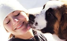 Maneras en que los perros se comunican