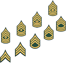 Army Nco Ranks Chart 20 Clean Army Enlisted Rank Structure Chart