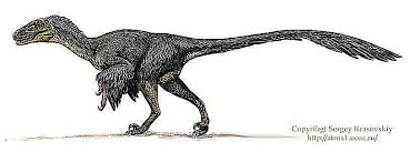 Select from premium dinosaur of the highest quality. 9 Famous Raptors That Weren T Velociraptor