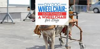 tips for diy dog wheelchair