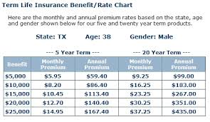 Aig Term Life Insurance Quote Classy Aig Term Life Insurance Quote Custom Download Term Life Insurance