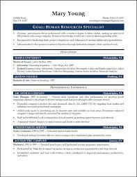 Sample Entry Level Resume Resume Summary Of Qualifications Sample Entry Level Danayaus 32