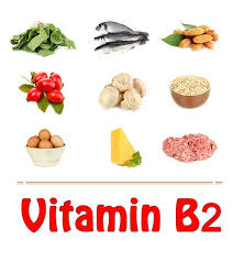 Dry Fruits Vitamins Chart Top 10 Vitamin B2 Rich Foods You Should Include In Your Diet