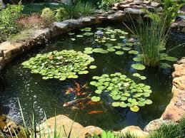 Our Favorite Garden Ponds From HGTV Fans HGTV Best Pond Garden Design