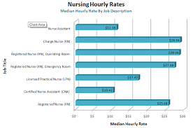 Different Types Of Nurses Salary Healthy Hesongbai