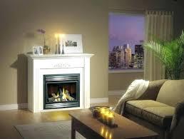 gas fireplace pilot light goes out pilot light gas fireplace regency fireplace pilot light out ideas
